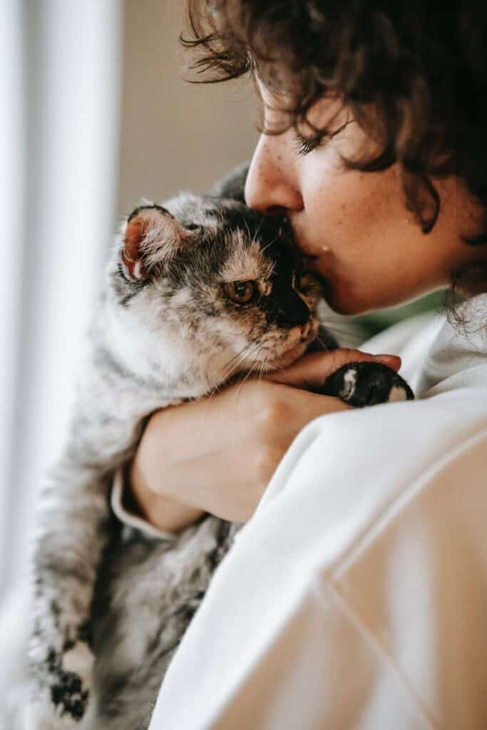 crop woman kissing and cuddling cat at home