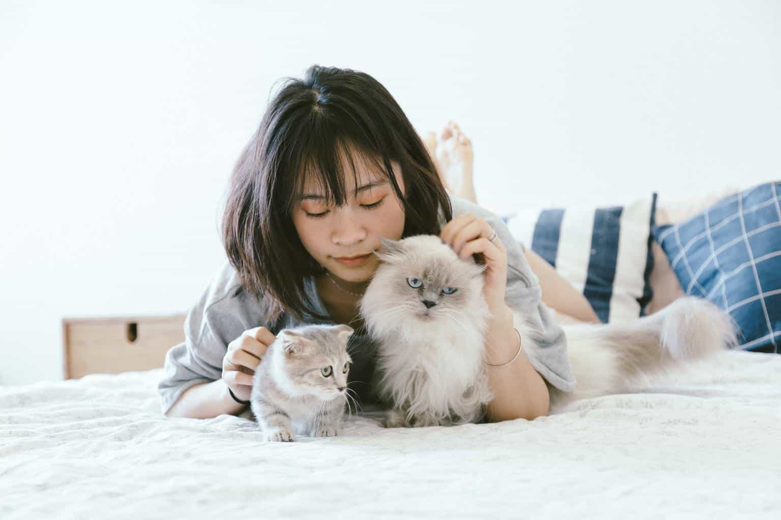 girl with two grey cats